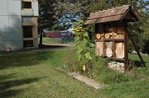 Das Bienenhotel für Wildbienen